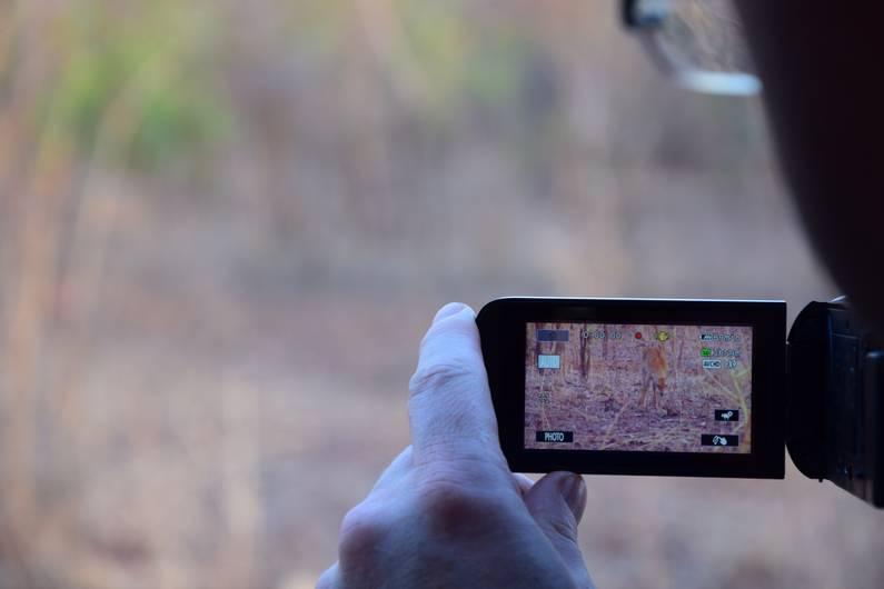 Camp de Nazinga au Burkina Faso | Jupette & Salopette